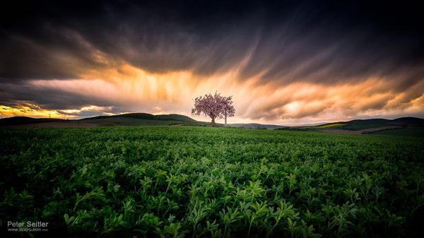 Za Krakovanským humnom I - Fotografiu som zhotovil ešte minulý rok, keď som šiel domov z práce. Každý deň rovnaká cesta, ale mračná a oblaky vždy iné…:-)  Priznávam, občas na ne pozerám viac ako na cestu. Našťastie však všetko dobre dopadlo a ja som mal pri sebe opäť správny objektív. Fotografiu som nazval: Za Krakovanským humnom I.